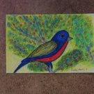Tropical Bird #1