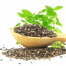 ORGANIC CHIA 15 000+ SEEDS *FREE SHIPPING ! w/ Sprouting Instructions 1-Z