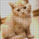 Little Cat cross stitch pattern in pdf ANCHOR