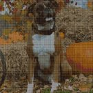 Boxer dog cross stitch pattern in pdf DMC