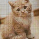 Little Cat cross stitch pattern in pdf DMC