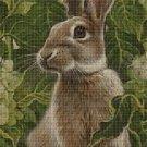 Rabbit cross stitch pattern in pdf DMC