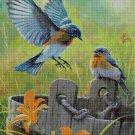 Birds on the bucket cross stitch pattern in pdf DMC