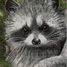Racoon cross stitch pattern in pdf DMC