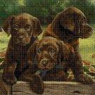 Labradors in box cross stitch pattern in pdf DMC