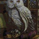 Old owl in library cross stitch pattern in pdf DMC