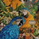 Parrots cross stitch pattern in pdf