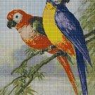 Parrots cross 2 stitch pattern in pdf