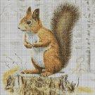 Squirrel 2 cross stitch pattern in pdf DMC