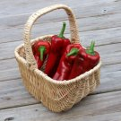 Red Marconi Pepper Vegetable 60 Seeds #SFB11