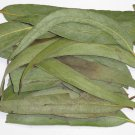 Eucalyptus leaves , hair, skin, relaxation, chest congestion, .- 1 oz Pack