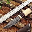"10"" Damascus steel skinner Knife,Camel bone Brass & Bull horn scale, sheath"