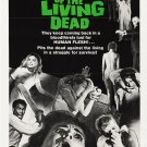 Night of the Living Dead POSTER FRIDGE MAGNET (2 x 3 inches)