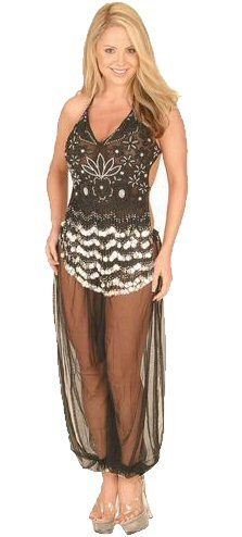 2 Piece Beaded Arabian Princess Costume with Pants and Sequins