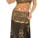 2 Piece Sheer Belly Dancer Outfit with Sequin Design and Hanging Coin Accents