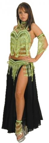 6 Piece Belly Dancer Costume with Beaded Fringe