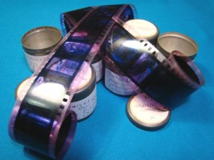 Nature Wildlife Forest 7 rolls Filmstrip 35mm school education celluloid projector film 35 mm movie