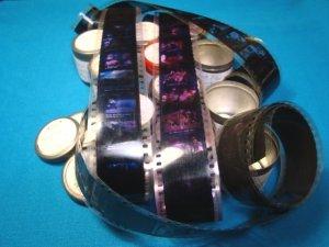 Farm Animal Pets 11 rolls Filmstrip 35mm school education celluloid projector film strip 50s movie