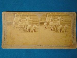 Eskimo children Columbian Exposition stereograph stereoview stereoscope card antique 1893 Kilburn