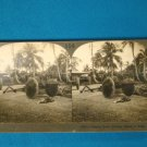 Island of Guam primitive cart stereoview stereograph stereoscope card Keystone View antique 1900s
