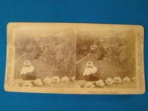 Swedish landscape at Husqvarna stereoview stereograph stereoscope card Underwood 1897 antique