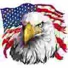 Eagle With Tear t-shirt
