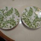 "ROSCHER & CO Ambiance Apple Green Stoneware 8 5/8"" Salad Plates (6)"