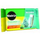 Miracle-Gro vergreen Tree Fertilizer Spikes, 12-Pack