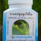 100 CAPSULES OF PHYLLANTHUS AMARU'S HEPATITIS B TREATMENT FOR JAUNDICE AND LIVER