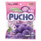 70 GRAMS OF PUCHO CHEWY CANDY IN GRAPE