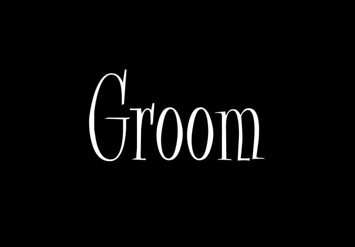 Groom - Style 2