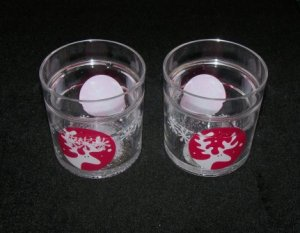 Reindeer Clear Tumbler 12 oz Cup- 2 piece set