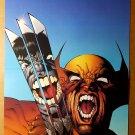 X-Men Wolverine vs Hulk 340 Marvel Comics Poster by Joe Quesada
