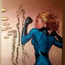 Invisible Woman Marvel Comics Poster by Steve McNiven