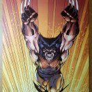 Wolverine Logan jumping Marvel Comics Poster by Jim Lee
