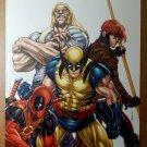 Wolverine Weapon X Gambit Deadpool Sabretooth Marvel Comic Poster Michael Ryan