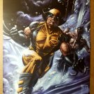 Wolverine Daken X-Men Marvel Comics Poster by Doug Braithwaite