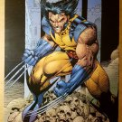 Wolverine Logan Marvel Comics Poster by Jim Lee