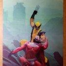Wolverine Vs Magneto Marvel Comics Poster by Esad Ribic