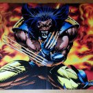Wolverine Broken Claws Fire Marvel Comics Poster by Adam Kubert