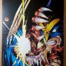 Wolverine Vs Brood Marvel Comics Poster by Adam Kubert