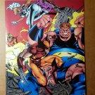 Wolverine Storm Blob X-Men Marvel Comics Mini Poster by Joe Madureira