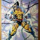 Wolverine Marvel Comics Poster by Adam Kubert
