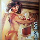 Zorro Lady Rawhide Topless Comic Poster by Adam Hughes