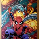 Spider-Man Marvel Comics Poster by Mike Wieringo
