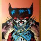 Wolverine Punisher Marvel Comics Poster by Jim Lee