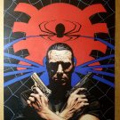 Punisher Spider Spider-Man Marvel Comics Poster by Tim Bradstreet
