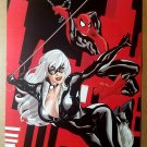 Spider-Man Black Cat Marvel Comic Poster by Terry Dodson