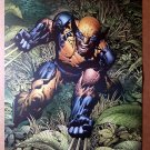Wolverine Marvel Comic Poster by David Finch