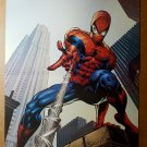 Spider-Man Marvel Comics Poster by Mike Deodato Jr